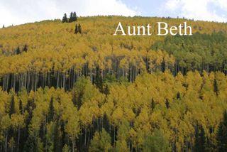 AuntBeth