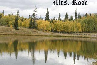 Mrs.-Rose