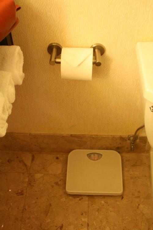 BathScales1