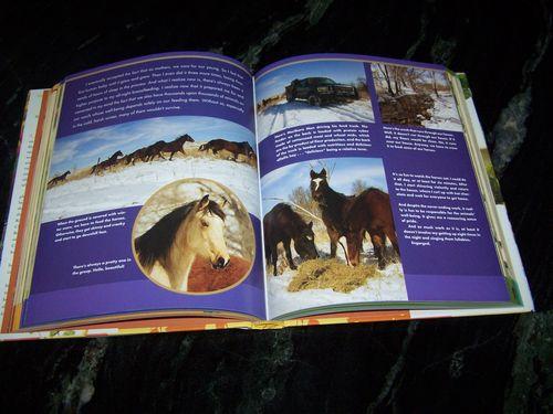 Drummond_Horses