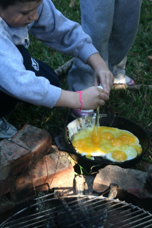 Eggs_1r