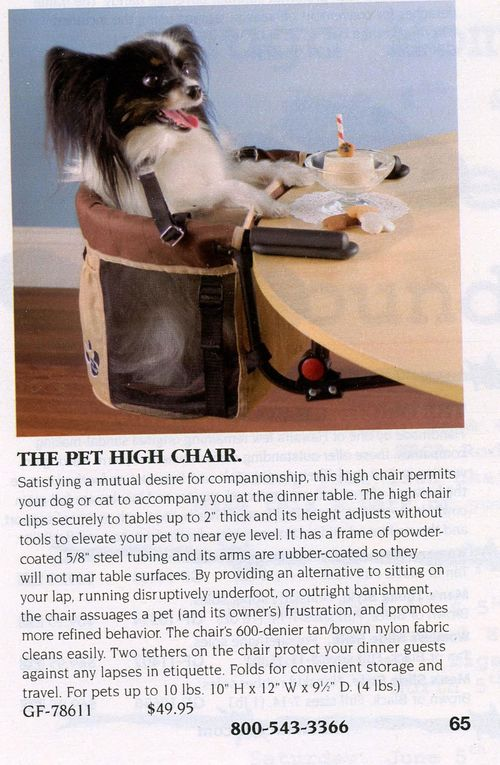 Pet-HIgh-Chair