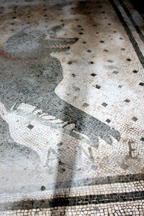 Italy_Pompeii_2c