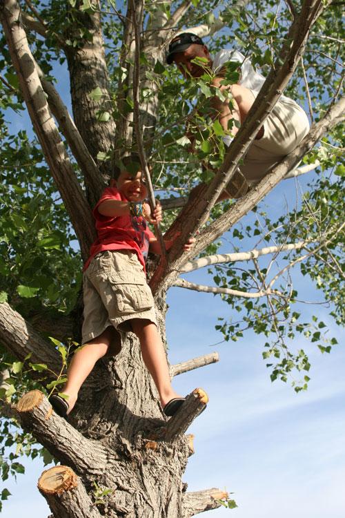 Tree_1e