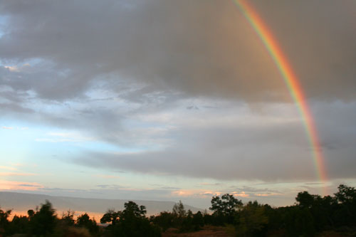 Drive_1w_Rainbow