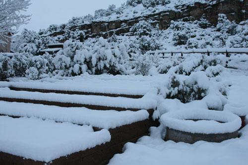 Snow_1o