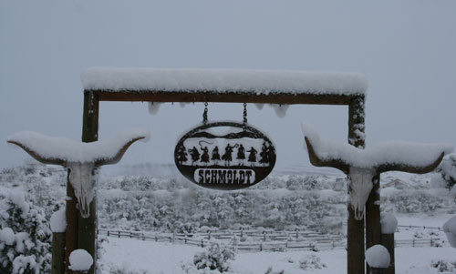 Snow_2b