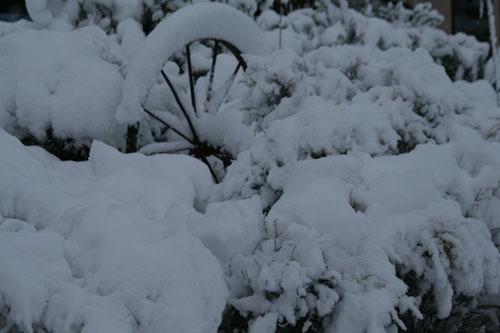 Snow_1u