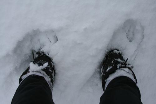 Snow_2f