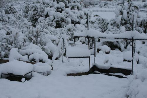 Snow_1s