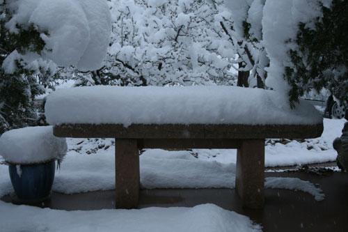 Snow_2n