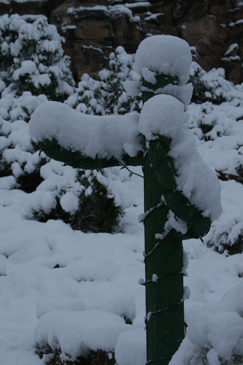 Snow_2q