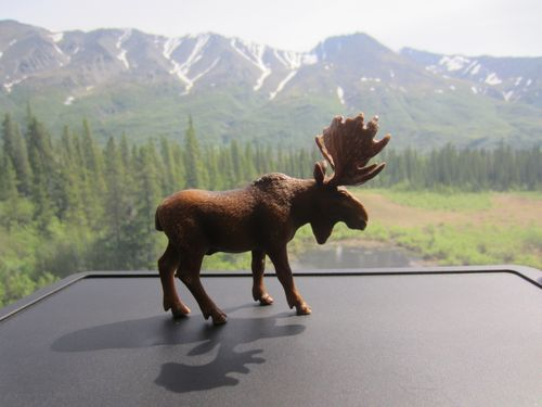 Alaska_1 103