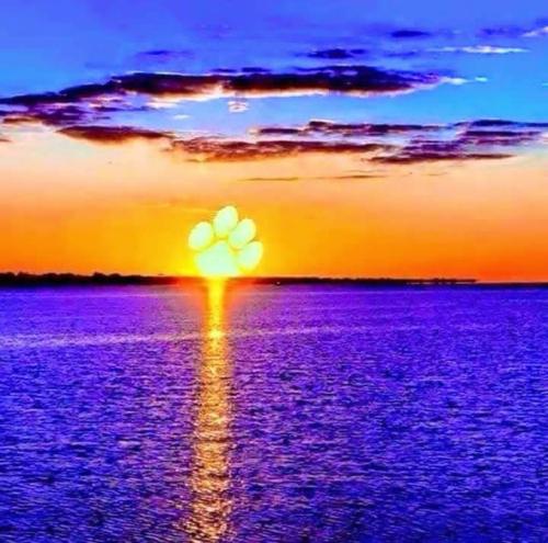 Lola_Sunset