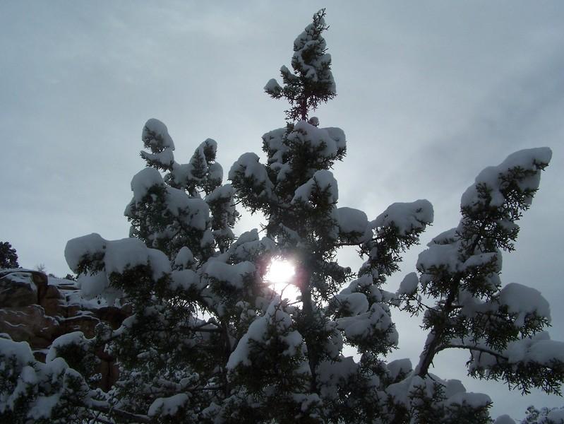 Jan07_snowfall_071